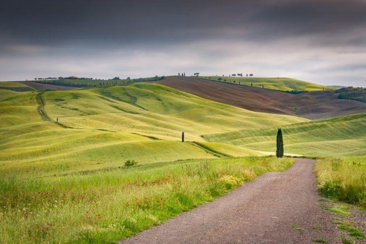Fazenda Boa vista: foto paisagem de colinas verdes
