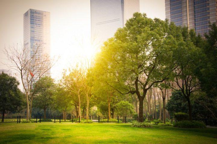 """Você já conhece o Cidade Jardim? Acesse nosso conteúdo e tenha acesso a tudo que você precisa sabe sobre o bairro considerado """"Zona de Valor A""""."""