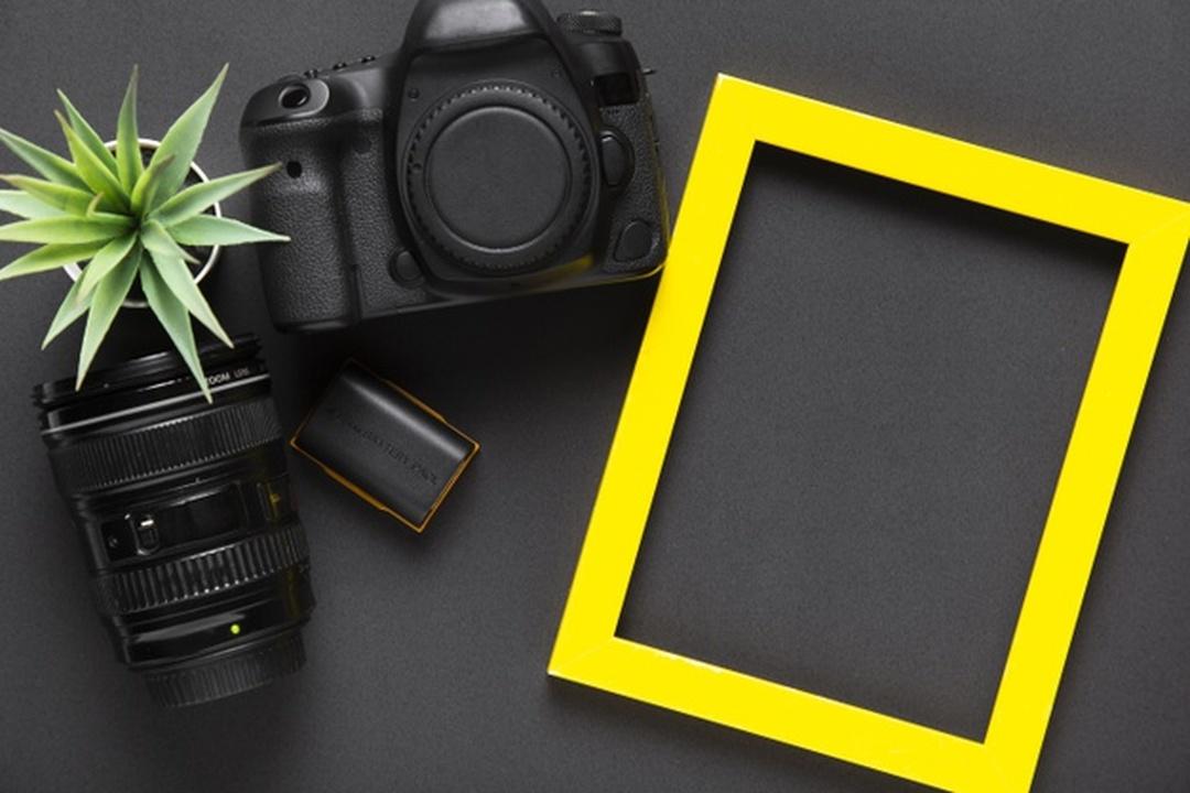 Arte em flores e fotografia: moldura de quadro e câmera de fotografia