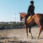Jovem mulher praticando hipismo em pista de treinamento