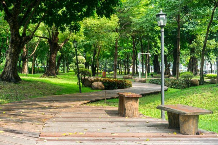 O parque e a praça com um caminho de madeira e bancos