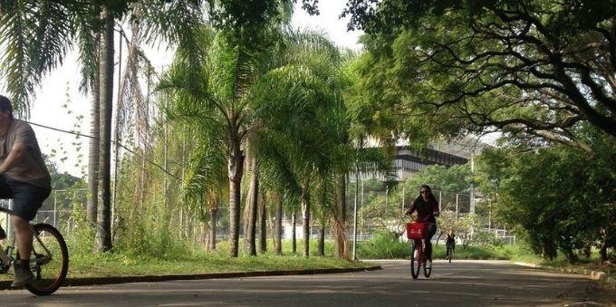Parque Ibirapuera: imagem de mulher andando de bicicleta no parque
