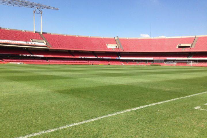 Imagem mostra campo de futebol, no estádio do Morumbi, com céu azul durante o dia