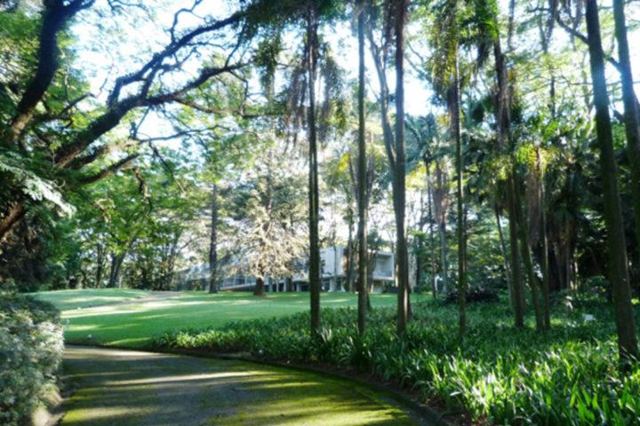 Cultura no Morumbi: imagem mostra Parque da Fundação, com caminho de pedras e árvores ao redor