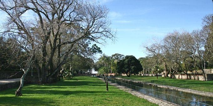 Imagem mostra campo aberto com árvores e pequeno rio no meio, no Jardim Monsanto, em Lisboa